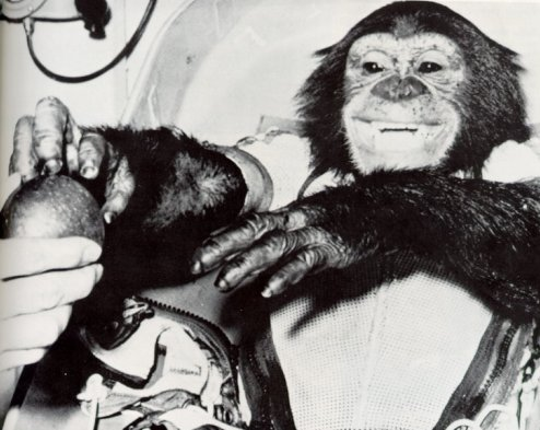the-way-of-the-panda-cameroon-s-gagarin-celebrating-the-life-of-ham-the-astrochimp
