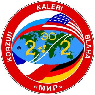 Mir-22 patch