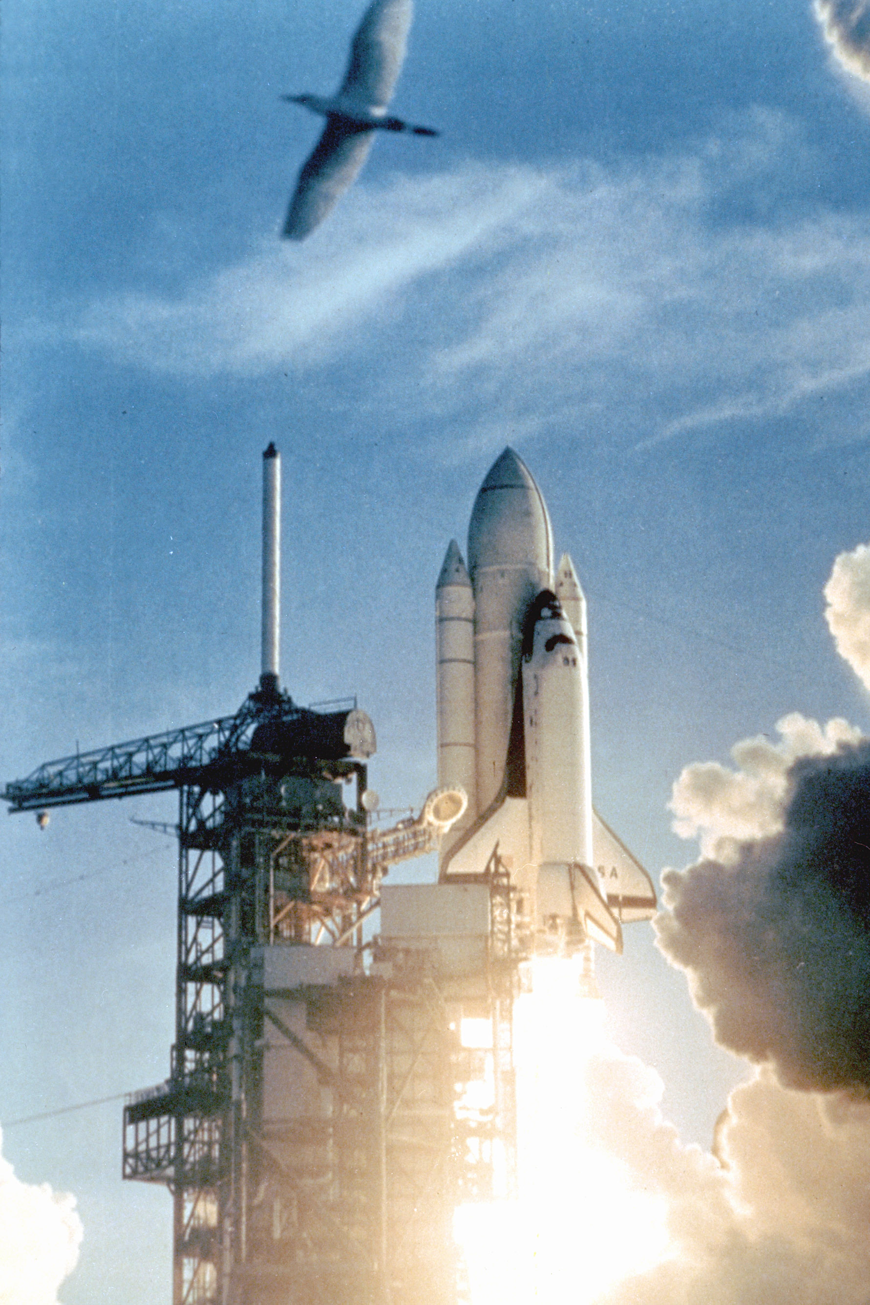 april 12 1981 space shuttle - photo #9